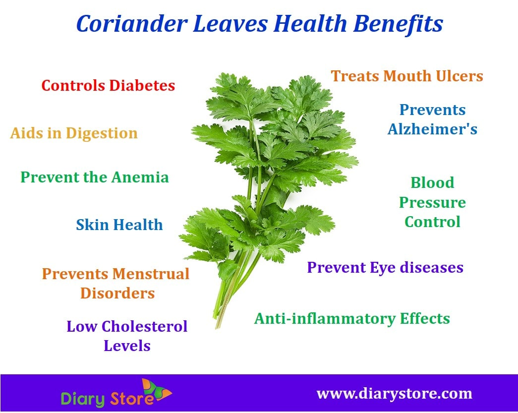 coriander leaves nutritional facts health benefits