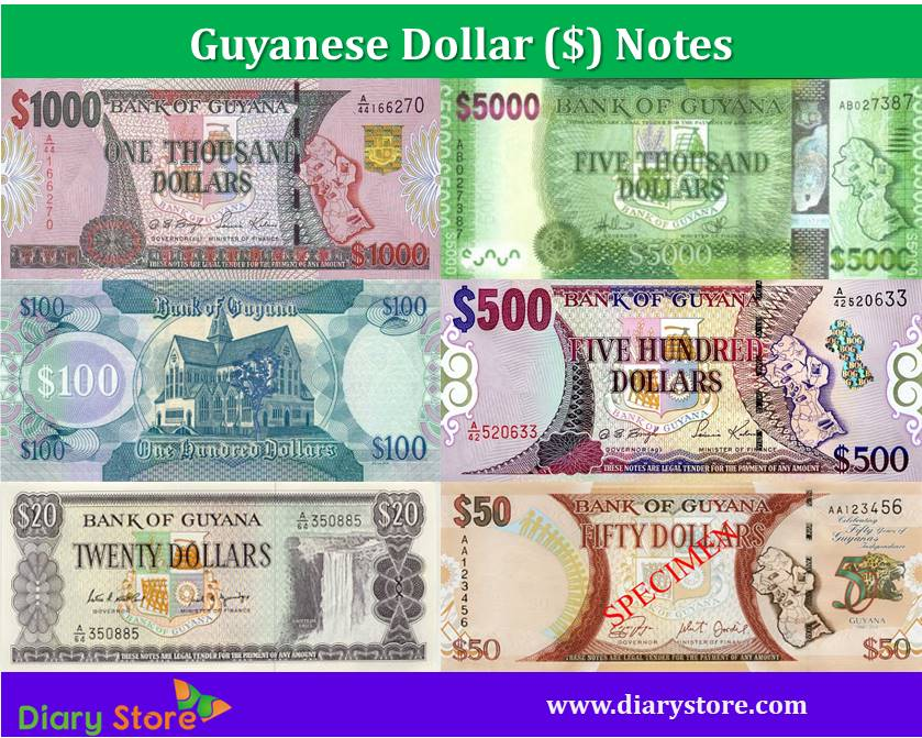 Guyanese Dollar Currency | Guyana Dollar Notes | Diary Store
