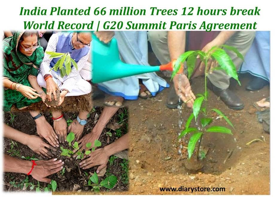 India planted 66 million Trees