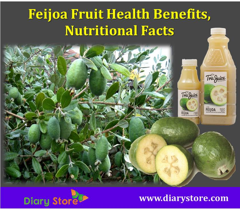 Feijoa Fruit Pineapple Guava Guavasteen Nutrition