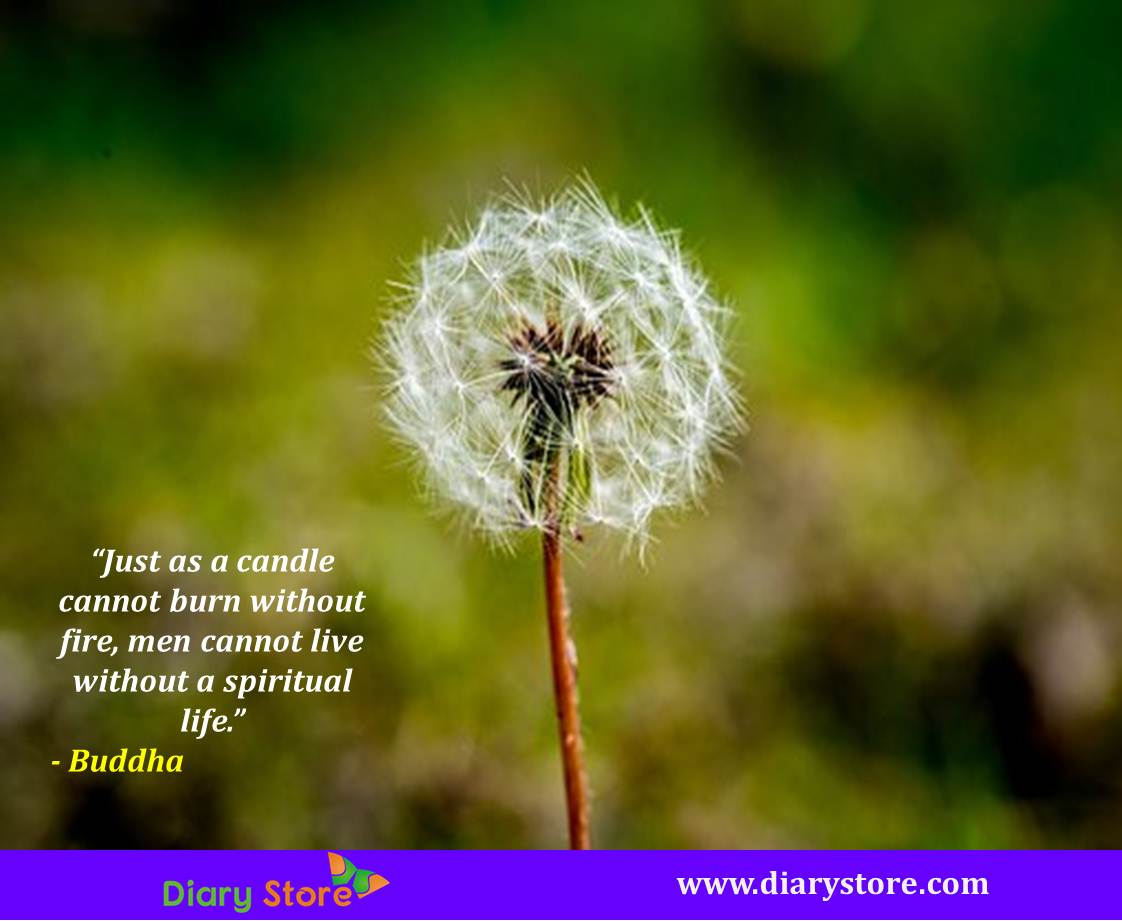 Spiritual Life Quotes Life Quotes  Best Quotations On Living Beautiful Life  Diary