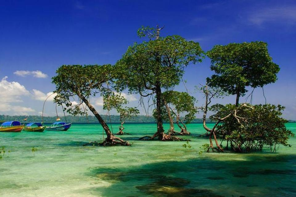 Andaman Tour Package by Kesari