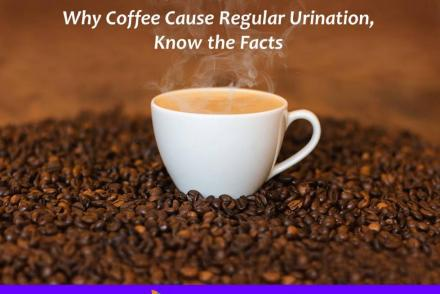 Coffee Cause Regular Urination
