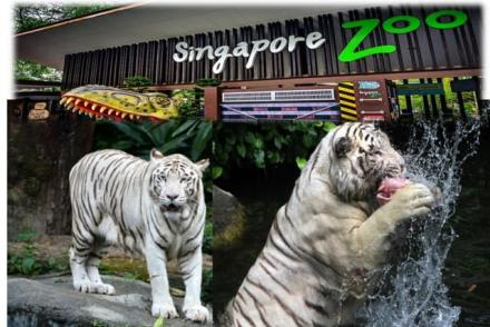 Singapore Tourist Attractions